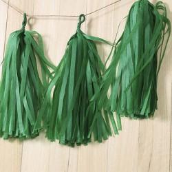 Pompon Tassel vert x 5