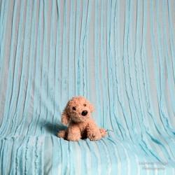Bleu - Wrap ou tissu de fond modèle fines vaguelettes