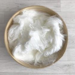 Pose bébé poils longs volatiles vanille