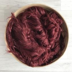 Pose bébé poils longs volatiles rouge automnale