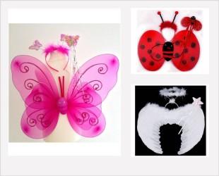 Ensemble ailes, papillons, coccinelles, anges...